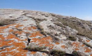 Руны и камни. Фотографии рун на фоне дикой природы.
